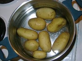 Wir ernten unsere kartoffeln aus dem blumenk bel sind for Kochen bei gicht